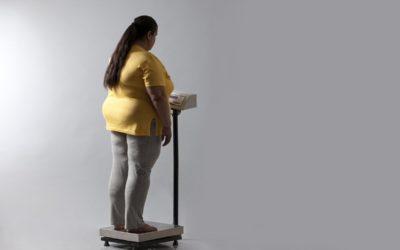 «белок похудения»